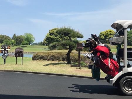 golfIMG_8431.jpg