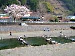 kosugegawa2.jpg