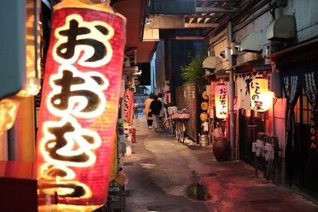 shizuokaIMG_3414.jpg